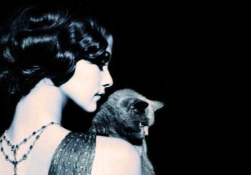 Se vi innamorate di una donna che ama i gatti, siete rovinati. Ecco perché…